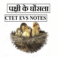 पक्षी के घोंसला CTET EVS NOTES IN HINDI