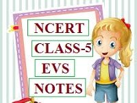 NCERT CLASS 5 EVS NOTES FOR CTET IN HINDI